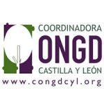 ONGD Castilla y León