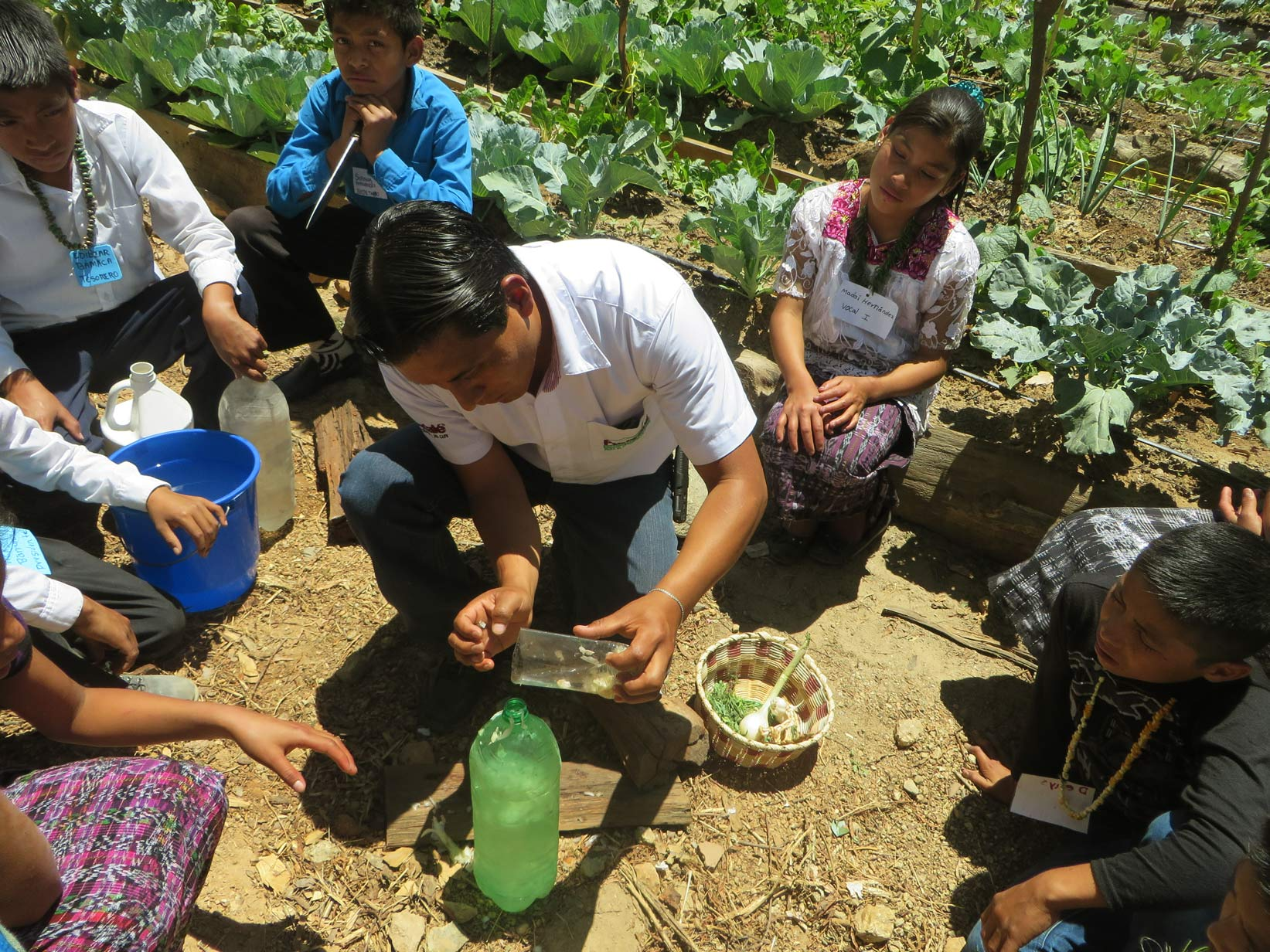 Guatemala-Huertos escolares