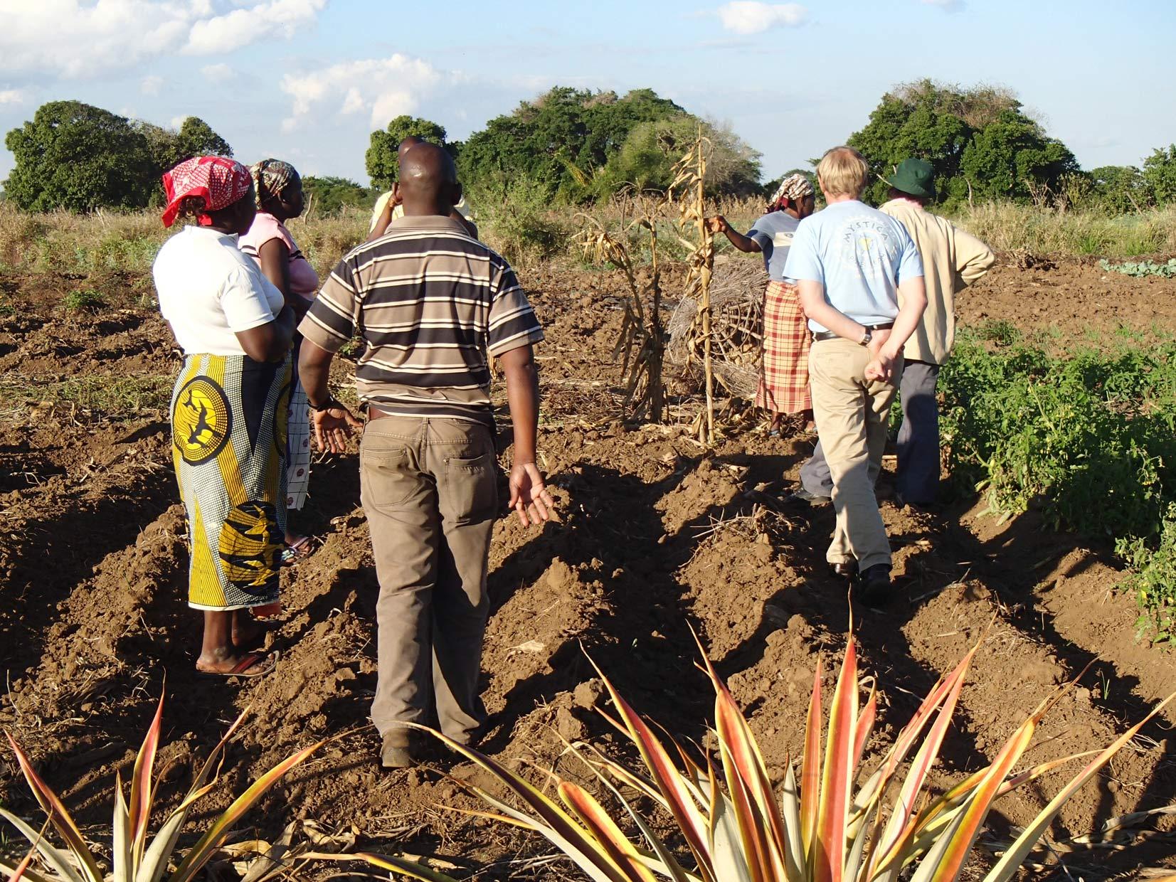 Mozambique- Moina